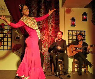 Tablao Flamenco Andalusí