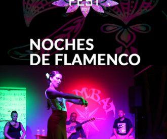 Noches de Flamenco en S'Embat