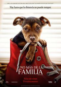 Cartel de la película Uno más de la familia