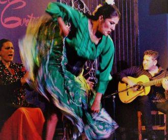 Cuadro Flamenco El Cortijo