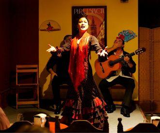Tablao Flamenco Pura Esencia