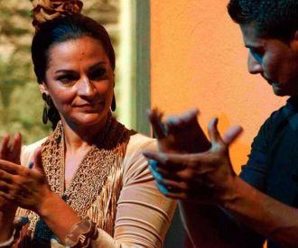 Flamenco en la Casa de la Memoria