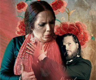 Espectáculo Flamenco en Málaga, Tablao Alegría