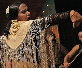 Espectáculo flamenco en Córdoba