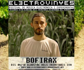 Electrovinyes Festival