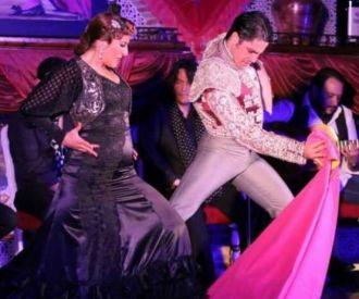 Espectáculo Tablao Flamenco Los Porches