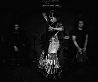 Espectáculo Flamenco en el Lucero