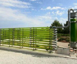 Ibiza botánico biotecnológico