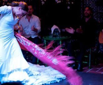 La Casa del Flamenco Danza Tradicional en Sevilla