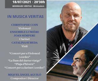 Concert Privat per a Mecenes - In Musica Veritas